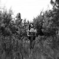 Анастасия :: Макс Липовецкий