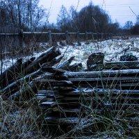 Старый забор :: Людмила Комарова