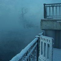 Смотри...свободен путь в туман... :: Александр | Матвей БЕЛЫЙ