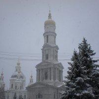 Успенский сквозь метель :: Наталья Тимошенко
