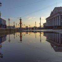 Зимнее отражение :: Valeriy Piterskiy