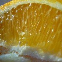 Апельсин :: Ольга Чазова