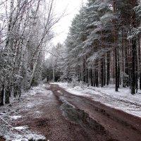 Зимняя дорога в никуда... :: Павел Хмельницкий