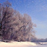 Под голубыми небесами... :: Евгений Юрков