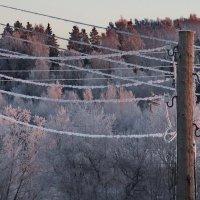 морозное утро 1 :: Юрий Бондер