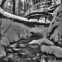 Лукоморье зимой :: Александр Лебедев