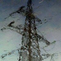 отражение в воде :: Александр Шамов