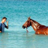 кони в море :: Маргарита Дворянникова