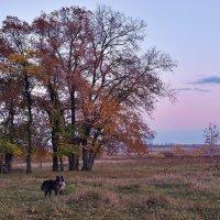 Джек и Осень :: gregory `