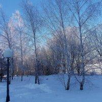 Холодновато однако - 20 :: Irina