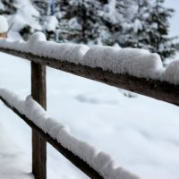 Зима пришла :: Дмитрий Арсеньев