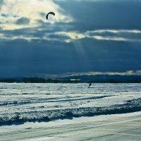 кайт на снегу :: Юрий Кацев