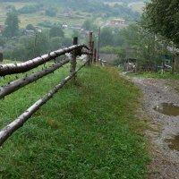 дождливый день-10 :: Богдан Вовк
