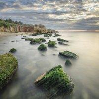 кисельные берега :: Vadim Shuvarskiy