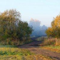 Умиротворенность осеннего утра :: Виктор Ковчин