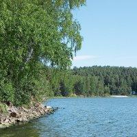 Лето на озере :: Светлана Игнатьева