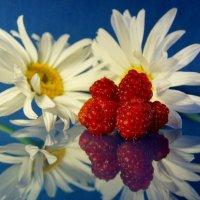 Про ромашки и малину. :: Валерия заноска
