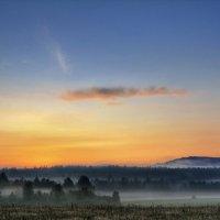 Туманный рассвет :: Антон Летов