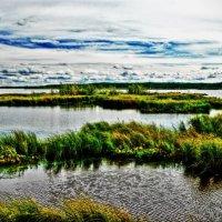 Озеро Надым :: Борис Соловьев