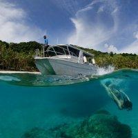 Dive into paradise :: Andrey Narchuk