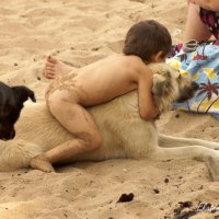 Собака - лучший друг ребенка:) :: Екатерина Березина