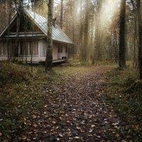 дом в лесу :: Екатерина Тумовская