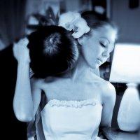 свадьба.прогулка.нежный поцелуй. :: Vitalii Oleinik