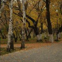 Прогулка в парке. :: Влад Белов