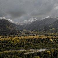 Уходящая осень :: Alex Svirkin