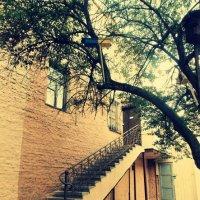 Лестница в........ :: Maria Sulima