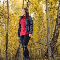 В осеннем лесу :: Екатерина Березина