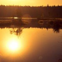 озеро Горбатое :: Владимир Потапов