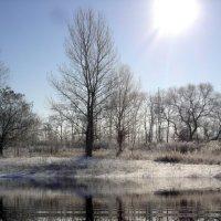 зима :: Сергей Запорожцев