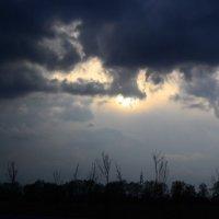 солнце за.. :: Foxi-Foxi 24