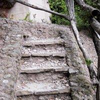 Лестница в небо :: Стил Франс