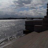Меж небом и Невой :: Ольга _Y