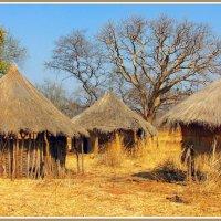 Африка.Замбия :: Евгений Печенин