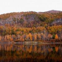 Осеннее :: Ксения Беляева