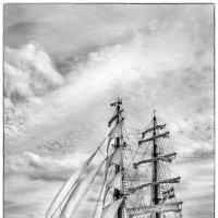 'Афродита' Северного моря :: Павел Лунькин