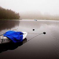 Река Мейзе, утро :: Борис Соловьев