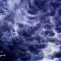 Storm :: Максим Королькевич