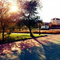 площадь ленина :: Константин Шептунов
