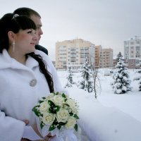 Под Новый год :: Елена Бачкамова
