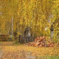 осень..золотая... :: Наталья Лещинская