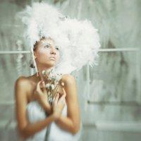 Ангел :: Денис Салманов