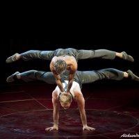 Украинские гимнасты :: AleksandraN Naumova