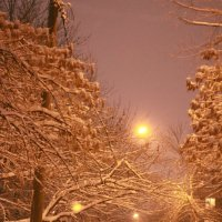 Снег :: Elenka Eenka