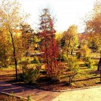 Парк Одора :: Константин Шептунов