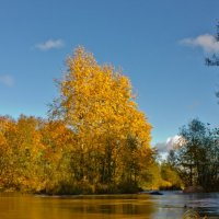 Осень, как время изменений. :: Pekka Lakko