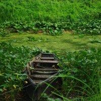 лодка на Десне :: Виктория Кудь